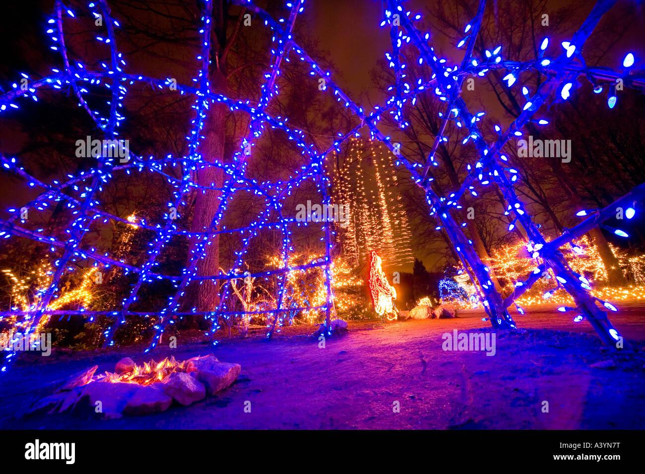 brookside gardens christmas led