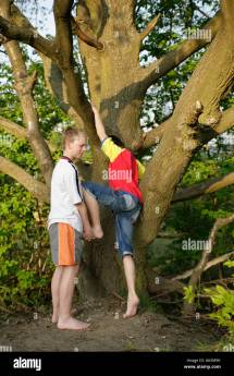 Boy Climbing Tree Barefoot Stock &