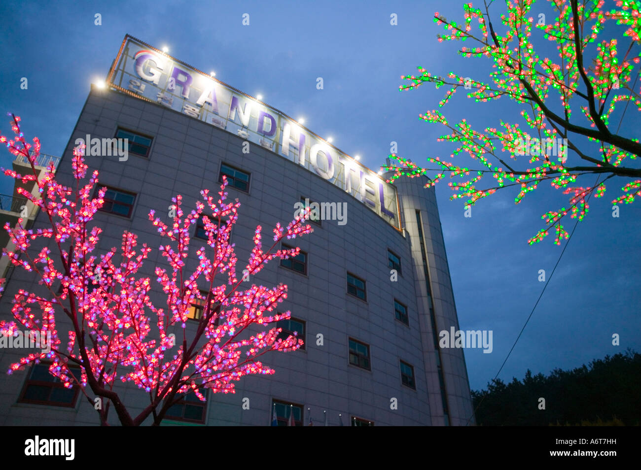Tree Lights Outside The Hotel Grand Incheon Seoul South