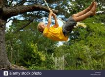 Hanging Swing From Tree