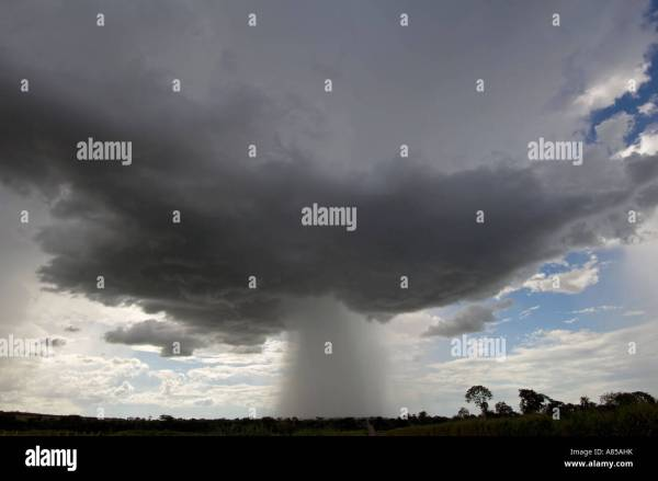 Cumulus Rain Cloud