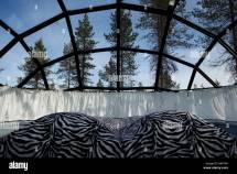Igloo Hotel Finland Stock &