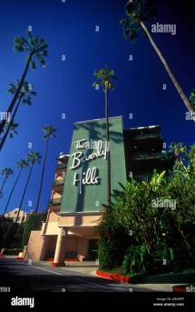Tall Palm Trees Beverly Hills Hotel Los