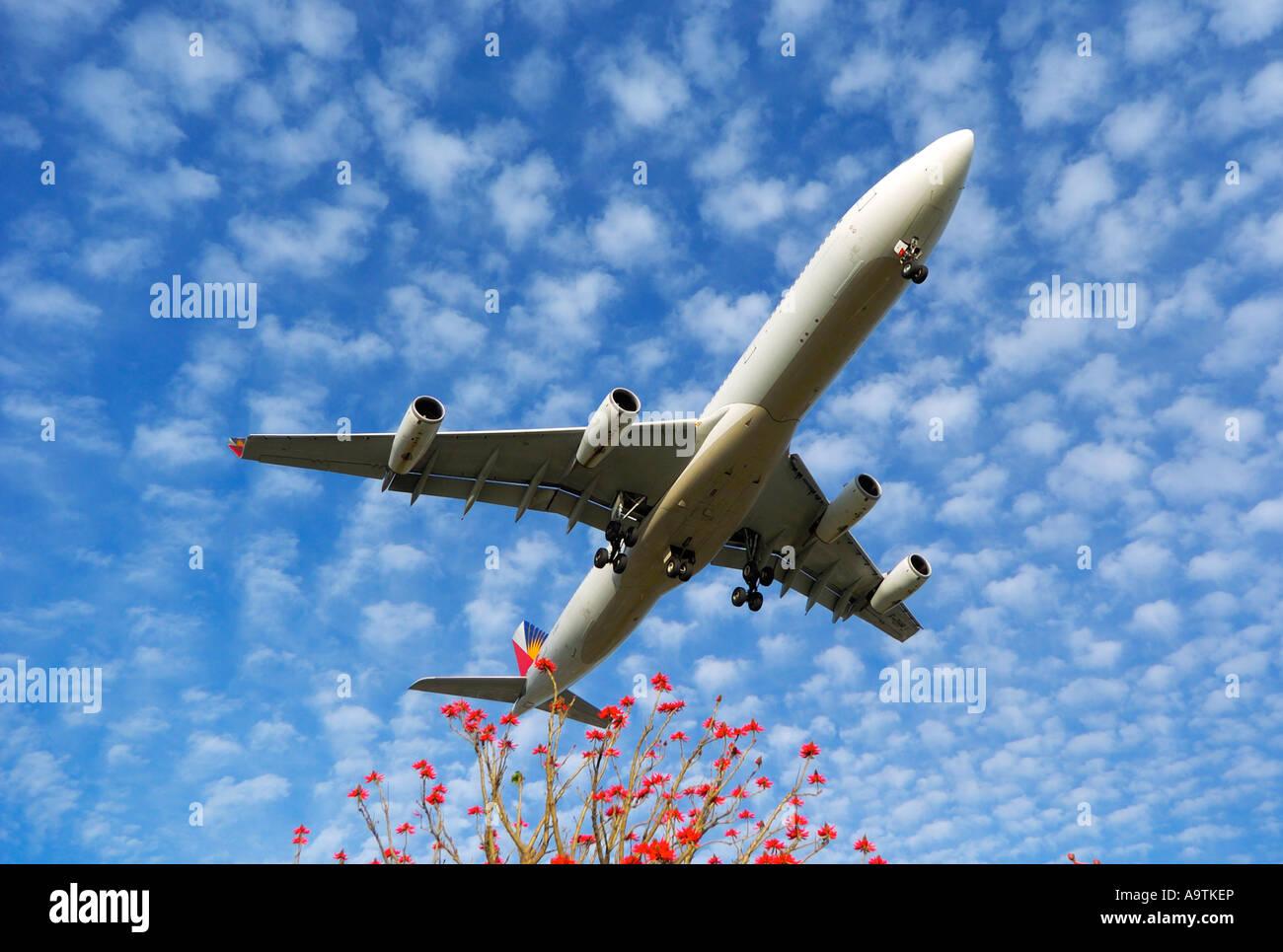 Flight Landing Lax Stock Photos & Flight Landing Lax Stock Images - Alamy