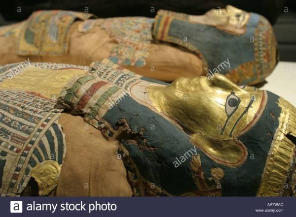 Natural History Museum Mummies