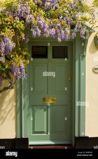 Green front door and wisteria Stock Photo, Royalty Free ...
