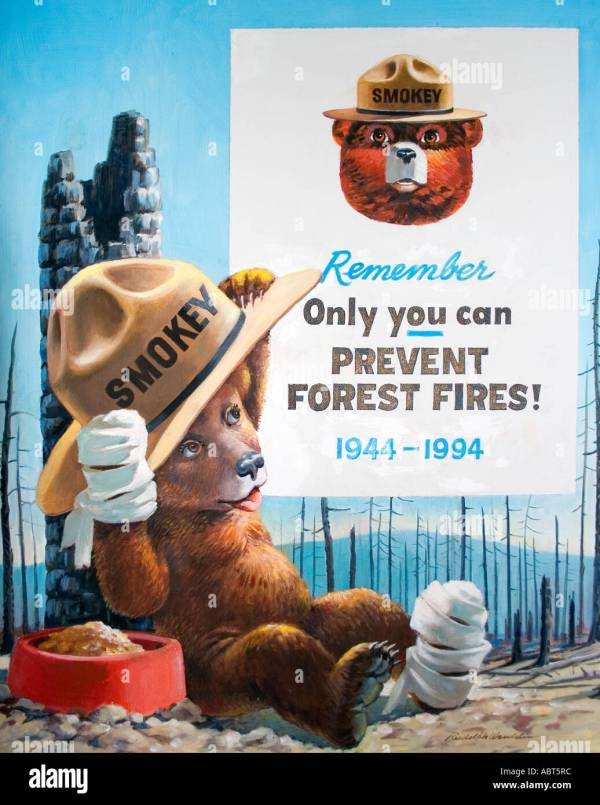 Smokey Bear Stock & - Alamy
