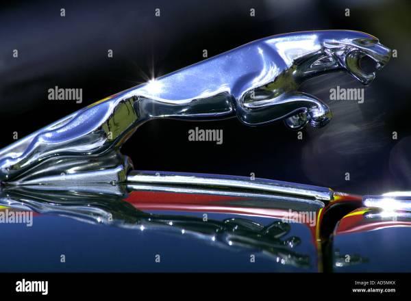 Jaguar Car Mascot Stock &