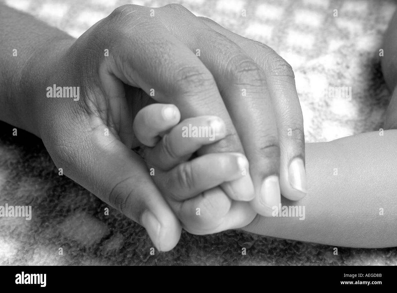 Baby S World Holding Hand Hands Finger Adult Trust Care