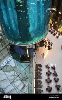 Aquadom Aquarium Stock &