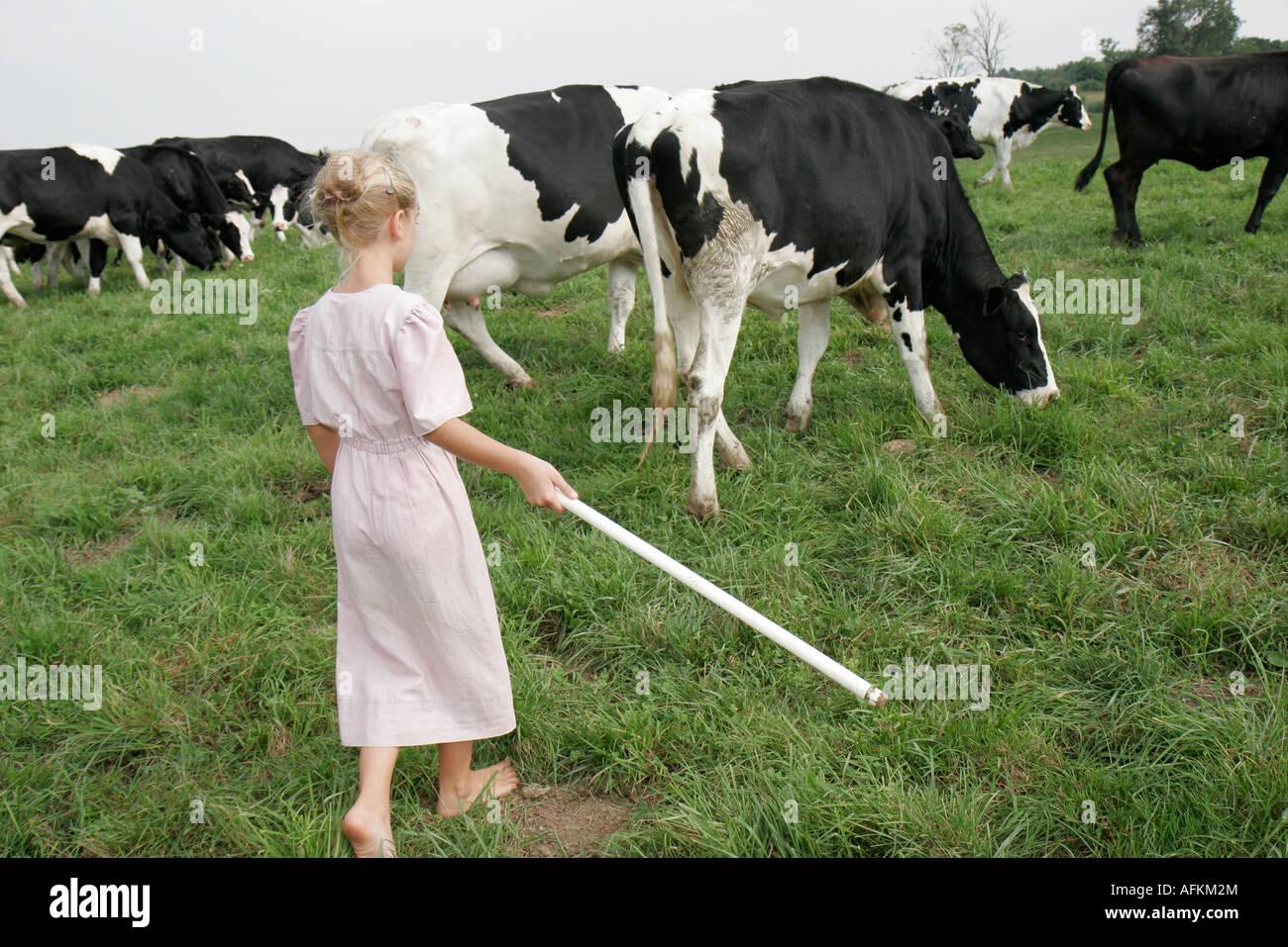 Indiana Shipshewana Amish Farm Tour Girl Corralling