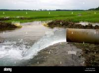 Water flowing from an irrigation pipe into a rice field in ...