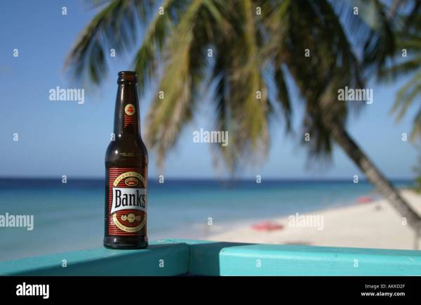Banks Beer Bottle Barbados Stock &