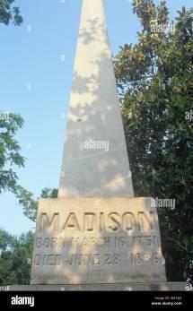 Dolly Madison Stock &