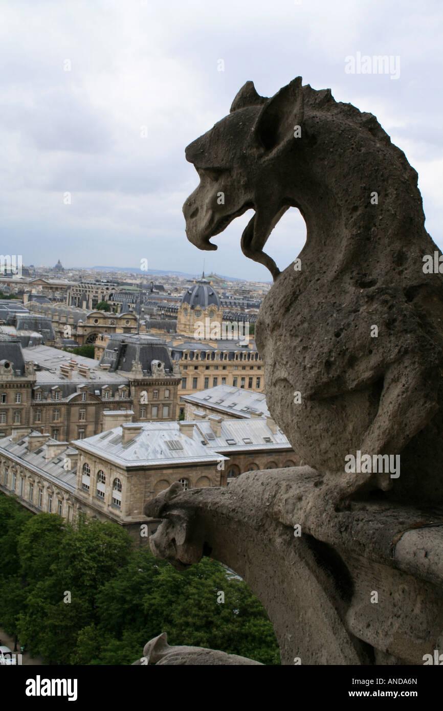 Gargouilles Notre Dame De Paris : gargouilles, notre, paris, Dragon, Gargoyle,, (gargouille), Notre, Cathedral, Stock, Photo, Alamy