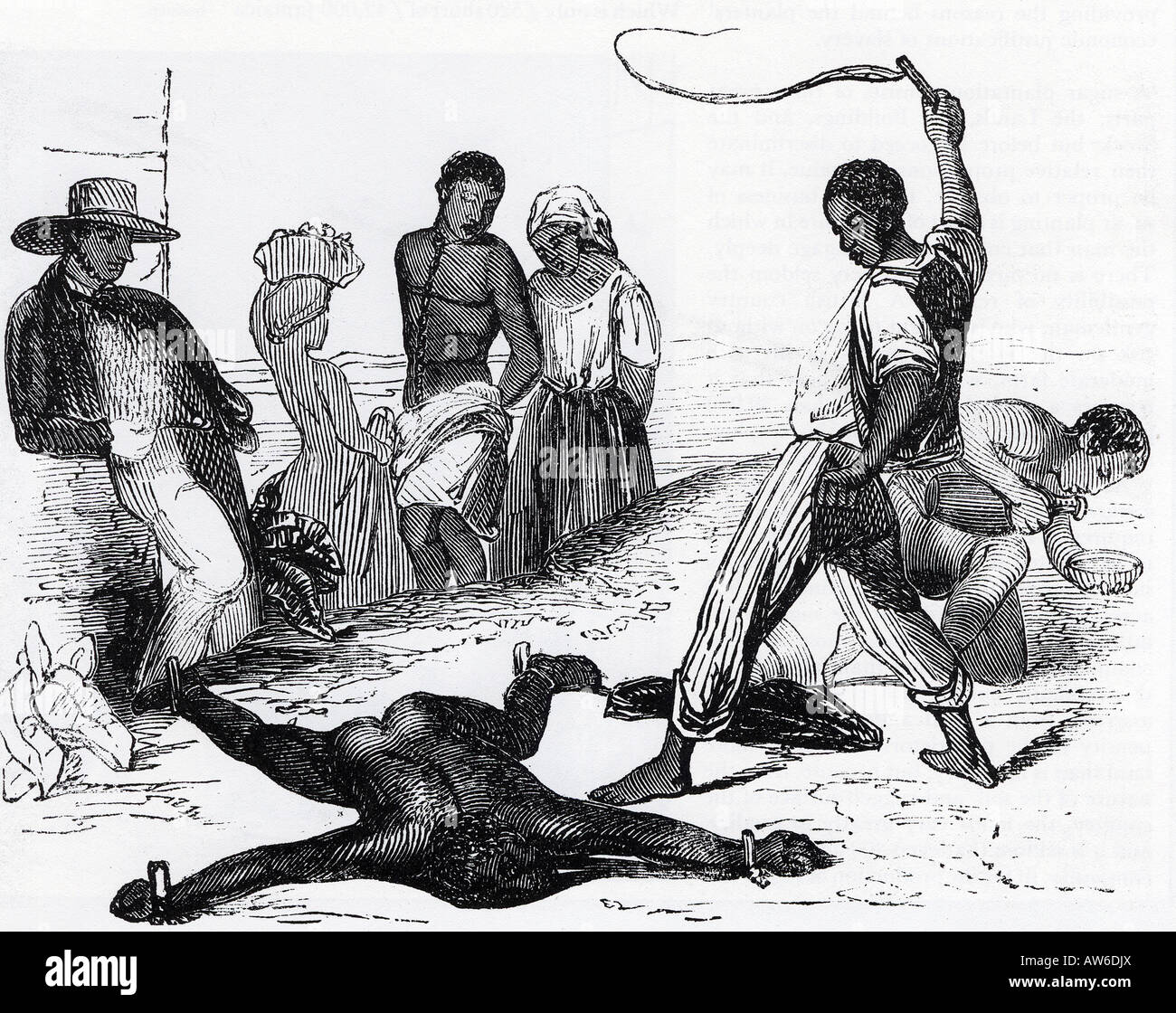 Slavery In West In S 18th Century Engraving Showing A