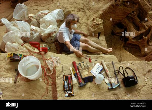 Paleontologist Digging Tools - Year of Clean Water
