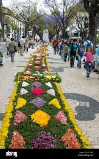 Carpet of flowers, April flower festival, Funchal, Madeira ...