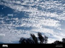Cumuliform Clouds Stock &