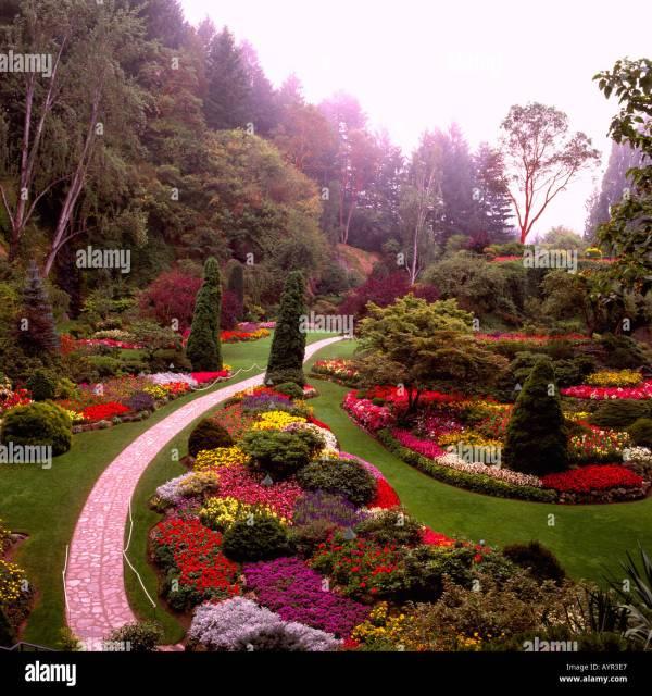 Victoria Vancouver Vegetation Stock &