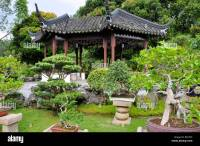 Bonsai tree garden in Chinese and Japanese Gardens in ...