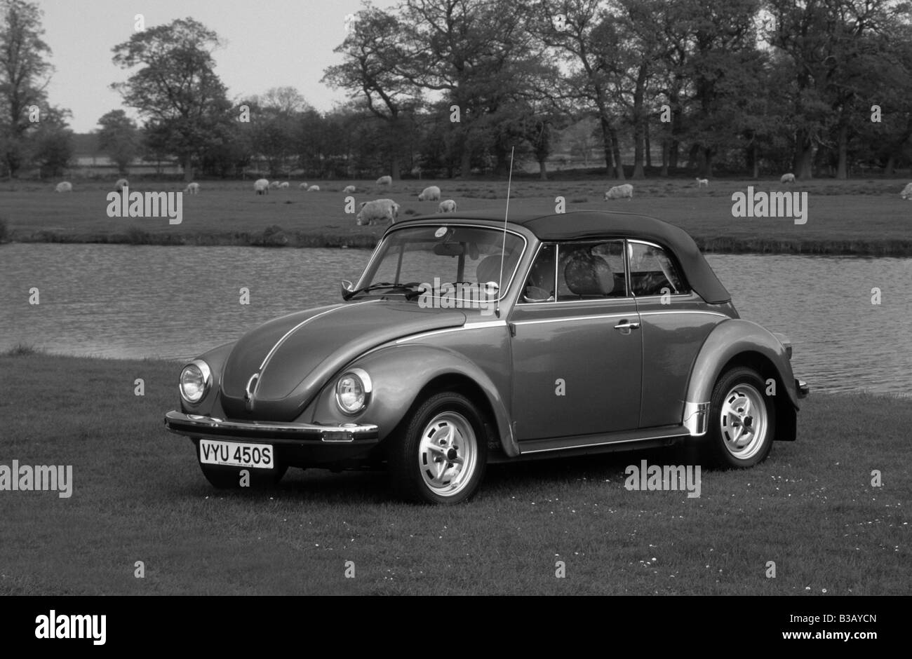 hight resolution of volkswagen beetle 1303 cabriolet of 1978 stock image