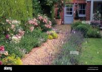 Brick gravel path border Rosa 'The Fairy' house cottage