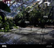 Greenhouse Tropical House Botansk Hage Botanical Gardens