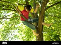 Teenage Boy Climbing Tree Stock 19581611 - Alamy