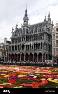 Flower Carpet Festival Stock Photos & Flower Carpet ...