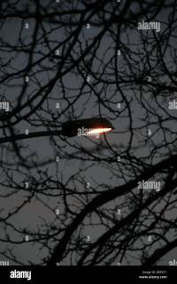 Street Lamp Post At Night | www.pixshark.com - Images ...