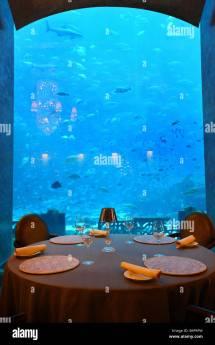 Atlantis Hotel Palm Dubai United Arab Emirates