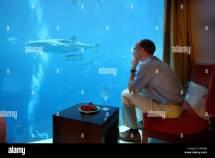 Dubai Underwater Hotel Stock &