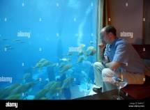Underwater Hotel Dubai Stock &