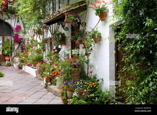 Plant Pots In Mediterranean Courtyard Garden Part Of