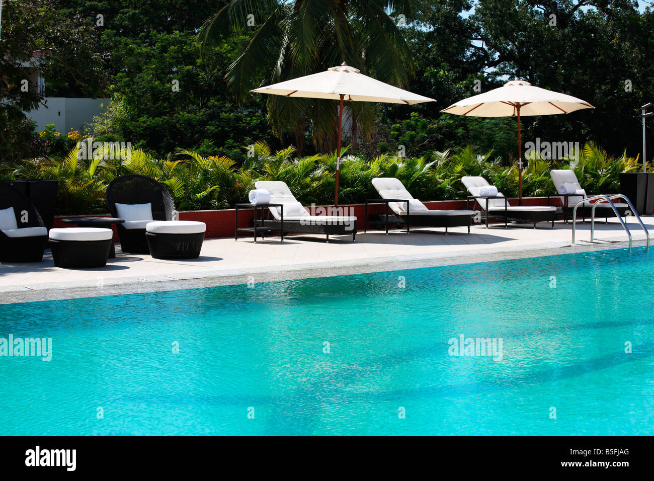 Pool Deck Chairs Swimming Pool Deck Chairs Loris Decoration