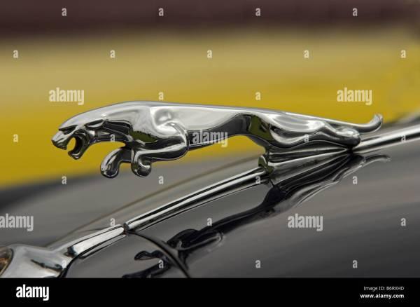 Jaguar Cars Mascot - Symbol Of British Engineering Stock Royalty Free