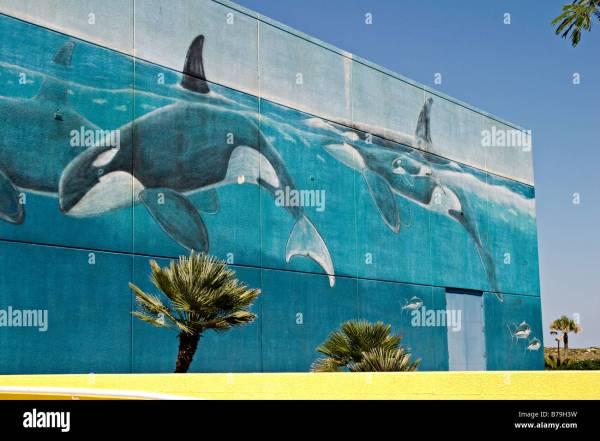 Wyland Wall Murals