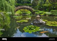 Japanese Garden with Moon Bridge and Lotus Pond with Koi ...
