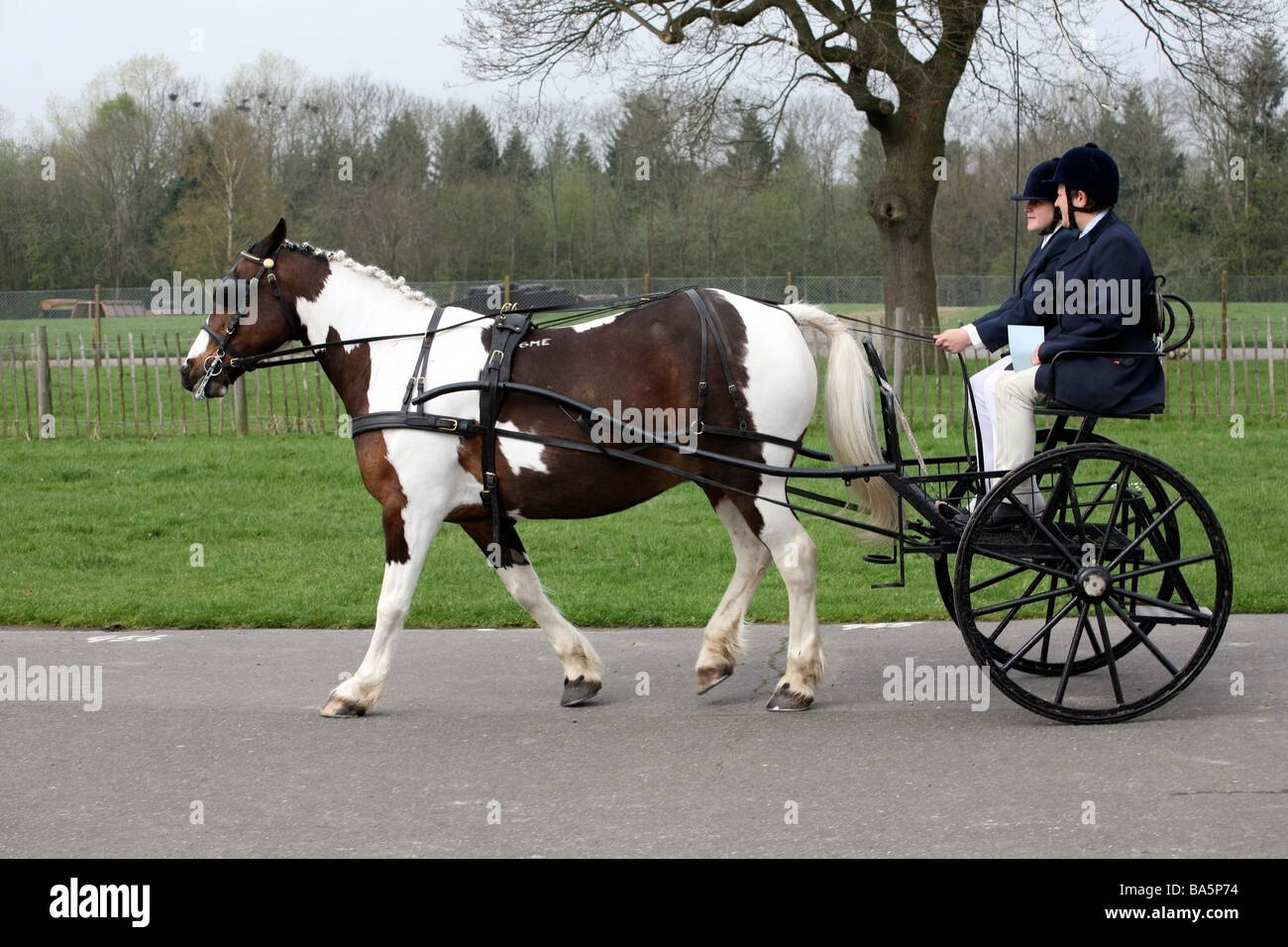 hight resolution of pony and trap moving fast at the london harness horse