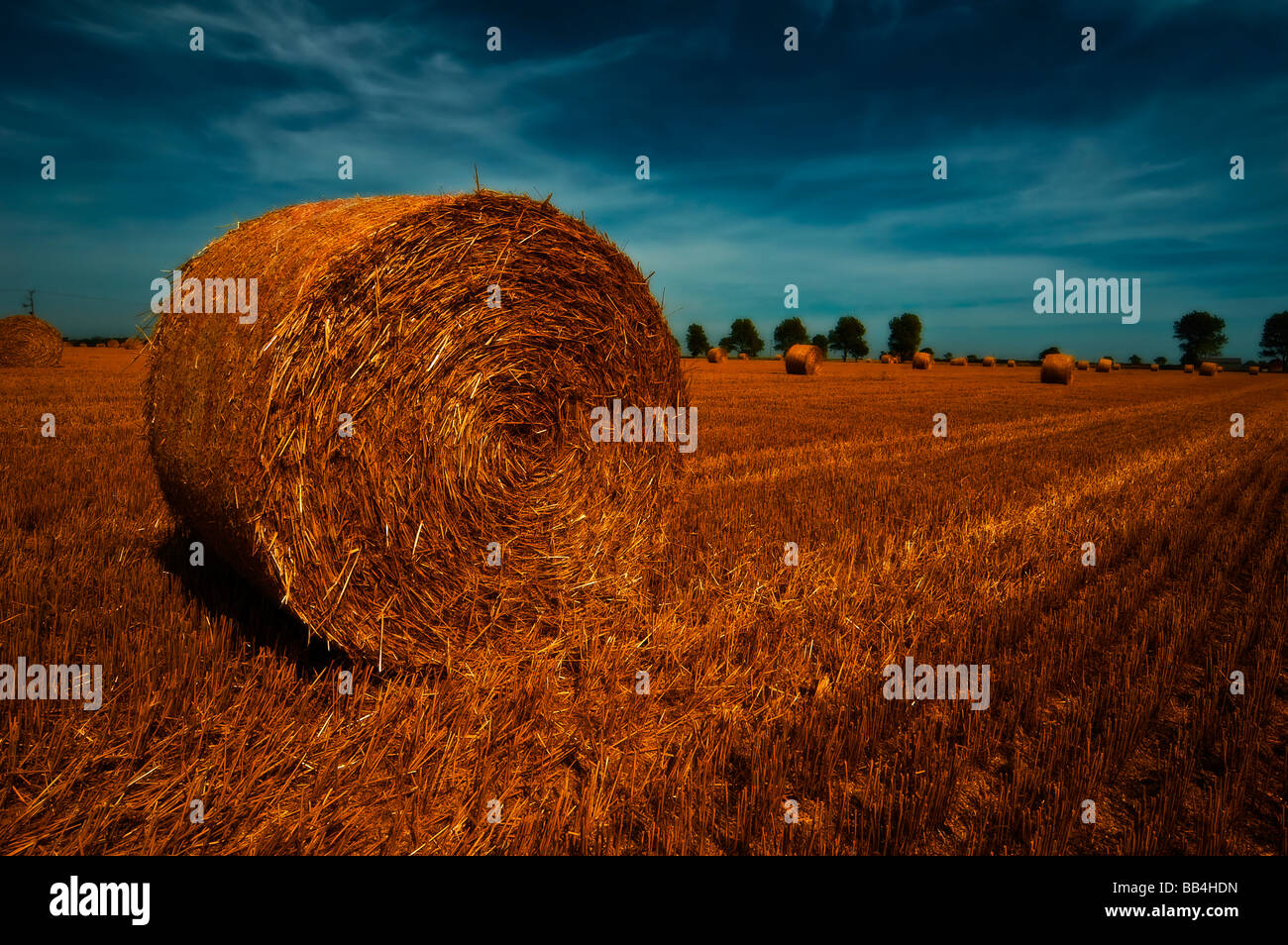 bail hay straw agriculture