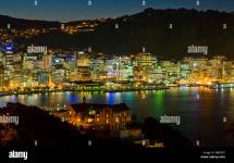 Wellington City Zealand Night Stock