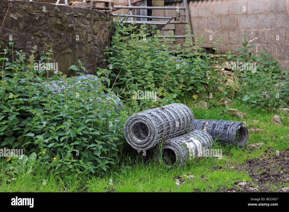 medium resolution of roles of barbed wire fencing in a farm yard stock image