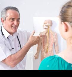 doctor explaining the structure of a human being with a diagram to a young patient [ 1300 x 956 Pixel ]
