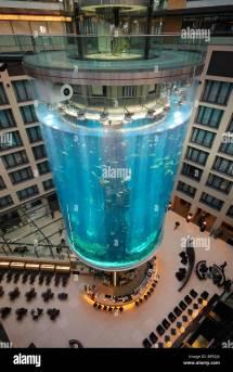 Lobby Of Radisson Sas Hotel. Domaquaree Aquadom. Sealife