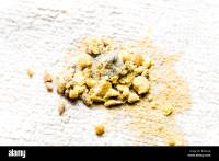 Cat Vomit On Carpet - Carpet Vidalondon