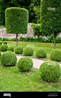 Topiary trees and bushes along a gravel path in an English ...