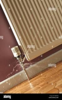 Floor To Ceiling Radiator Pipe | Integralbook.com