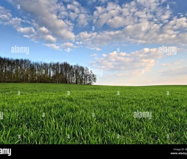 Landschaft Bei Herford Schwarzenmoor Xxxxx Stock Image