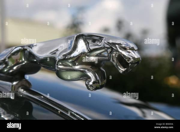 Jaguar Hood Ornament On the Car